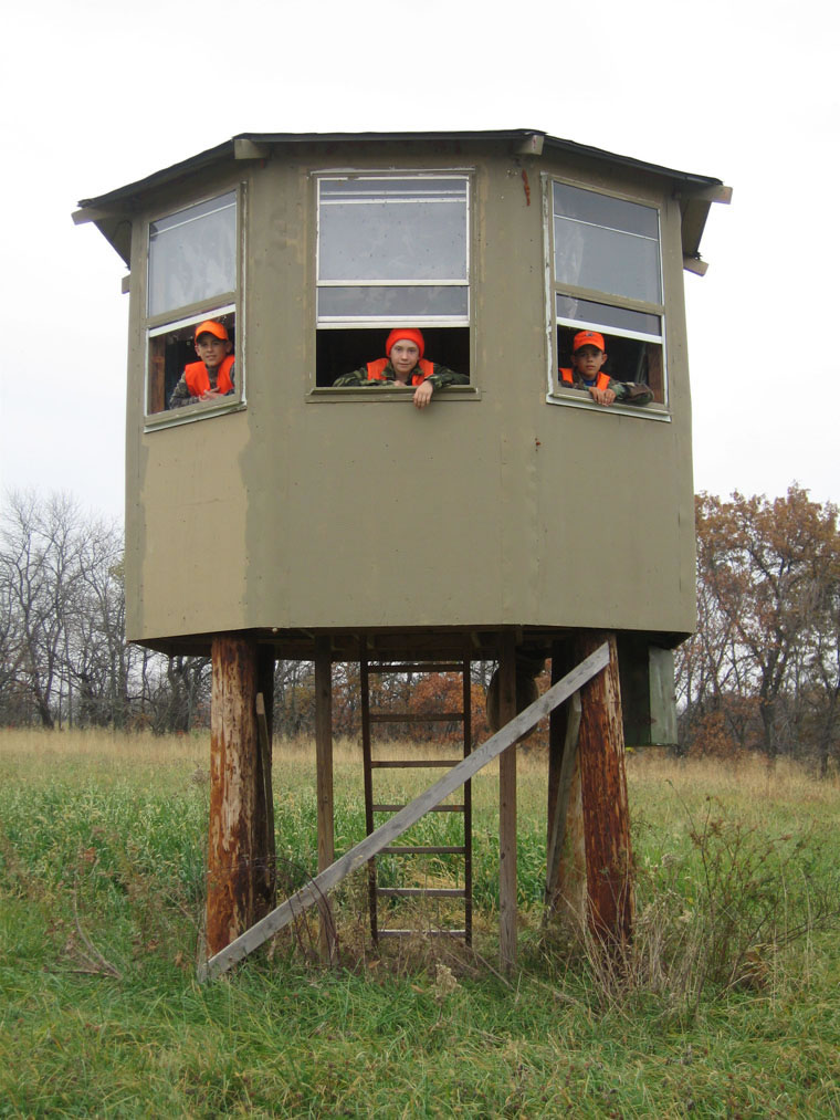 Looking For Wood Ladder Deer Stand Plans Sharewood